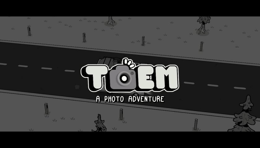 TOEM - Picture Perfect